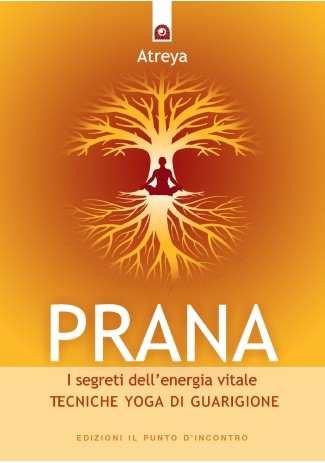 Prana, i segreti dell'energia vitale