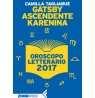 eBook: Gatsby ascendente Karenina