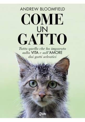 eBook: Come un Gatto