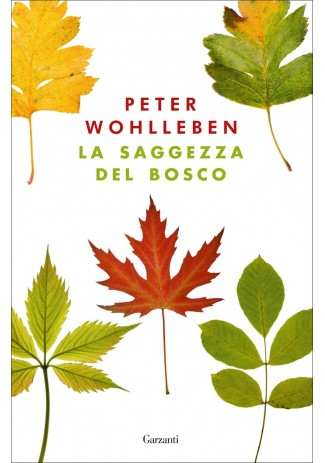 eBook: La saggezza del bosco