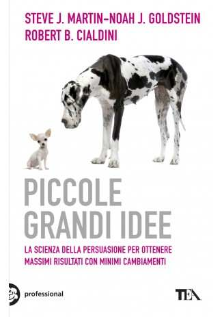 eBook: Piccole grandi idee