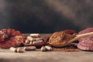 Polvere e pastiglie di reishi