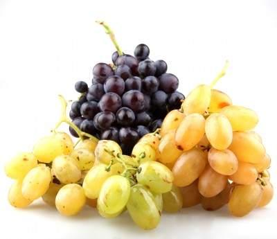 grappoli d'uva