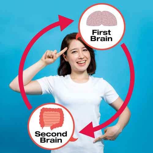 Cervello-intestino