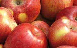 Mele. Uno dei 20 alimenti anticancro
