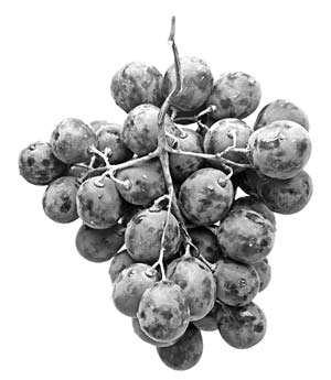 Uva. Uno dei 20 alimenti anticancro